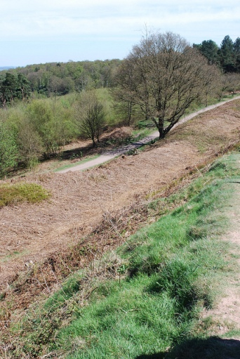 The ditch and steep embankment of Castle Ring